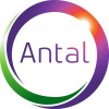 Antal International Italy Ltd