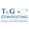 T&G Consulting srl